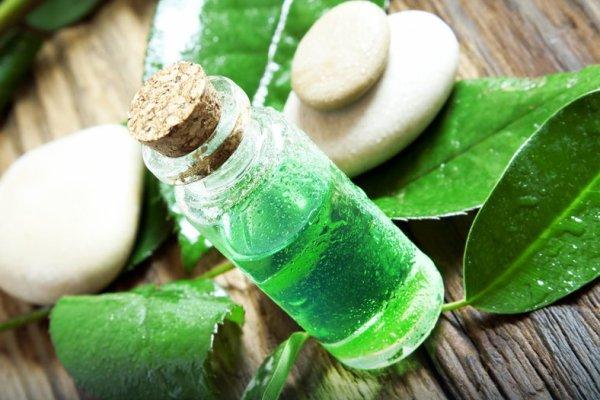 достоинства эфирного масло чайного дерева