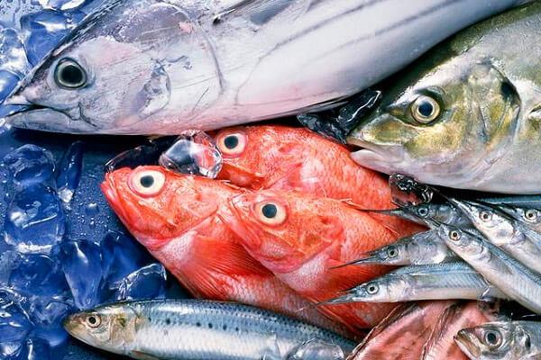 в морепродуктах содержится фосфор