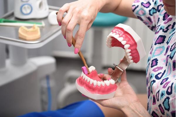 Фазы обучения гигиене полости рта