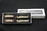 Искусственные зубы Yamahachi